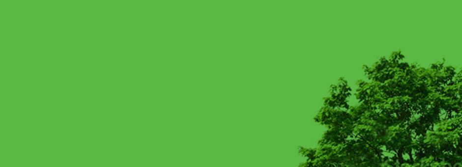 CEEC-Green-Background